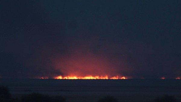 Пожар в заповедной зоне Нижнеднестровского национального природного парка