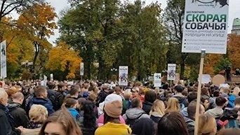 Акция в поддержку животных в Киеве