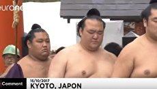 Японские богатыри: ритуал борцов сумо в Киото