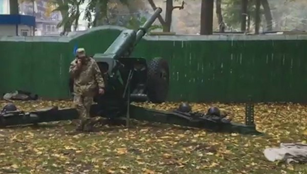 В Мариинский парк привезли пушки