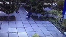 Похищение младенца из детского сада в Киеве. Видео