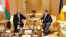 Встреча Александра Лукашенко и Петра Порошенко в ОАЭ. Архивное фото