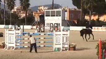 Онищенко разбился, упав с коня