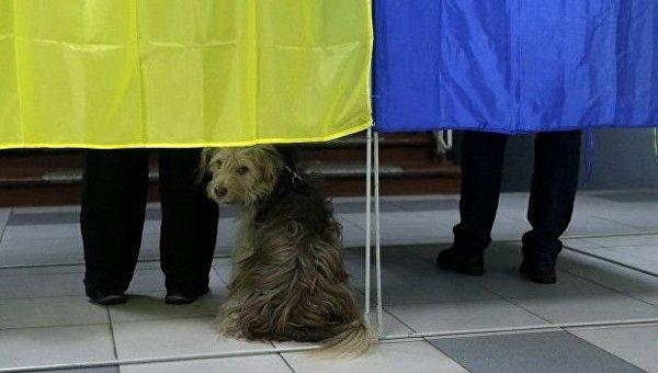 Выборы в Украине, октябрь 2017