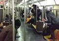 Крыса устроила переполох в метро Нью-Йорка. Видео