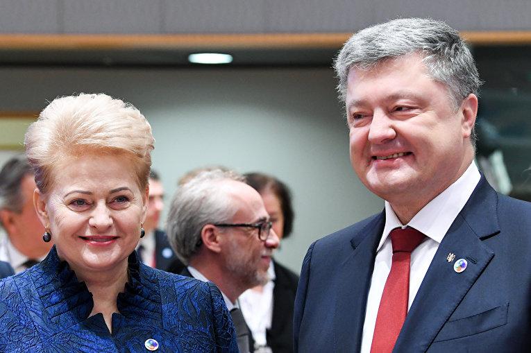 Президент Литвы Даля Грибаускайте и президент Украины Петр Порошенко выступили во время встречи на саммите ЕС «Восточное партнерство» с шестью восточными странами-партнерами на Европейском совете в Брюсселе 24 ноября 2017 года