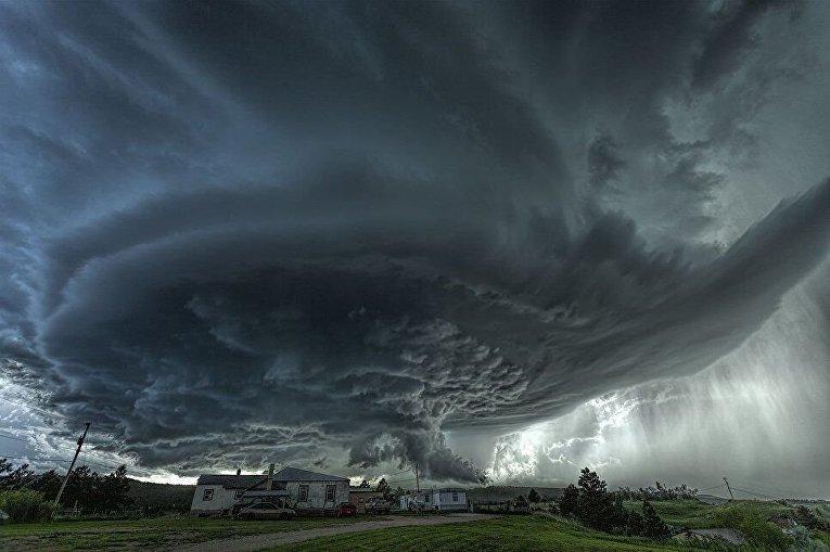 Снимок австралийца Джеймса Смарта Зверь
