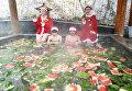 Некоторые посетители горячего источника на курорте в Лояне предпочитают принимать ванны с арбузами