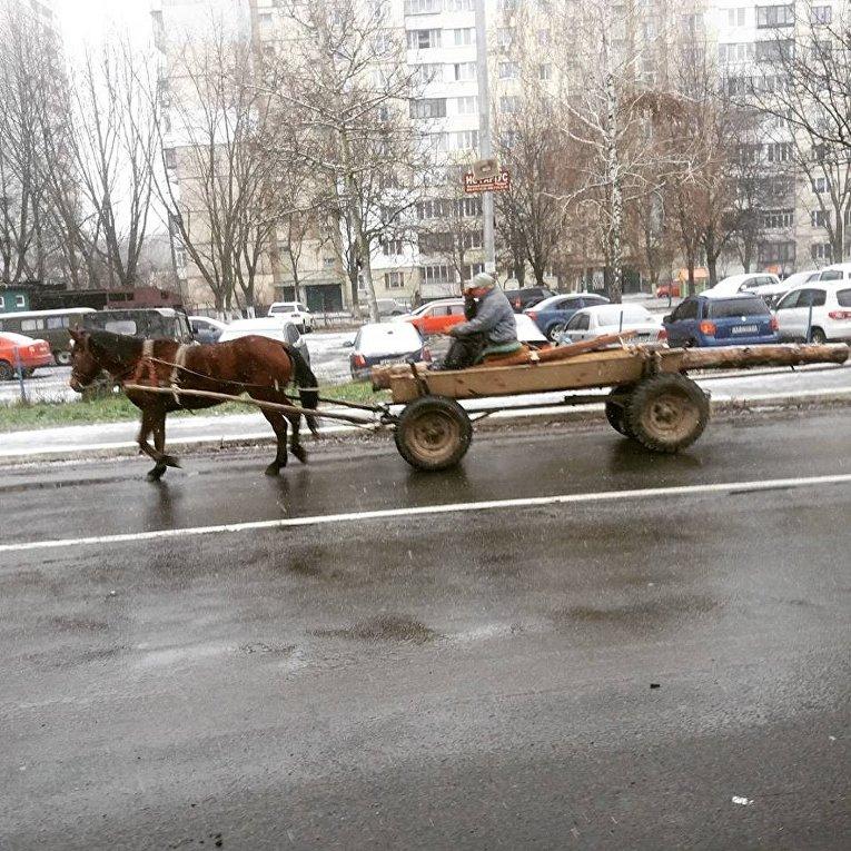 Мужчина едет на телеге в Киеве во время сильного гололеда