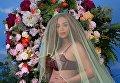 Самый популярный снимок Instagram, на котором изображена Бейонсе беременная двойней, набрал 11 миллионов лайков