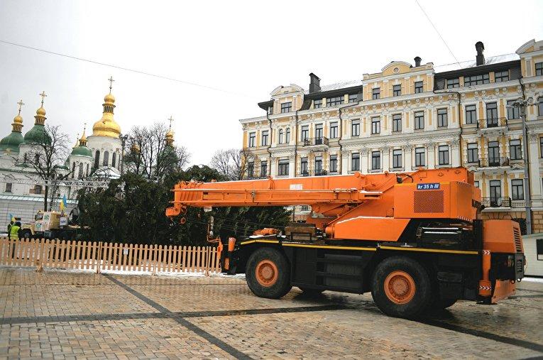 В Киеве устанавливают главную елку страны