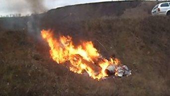 В Одесской области полиция торжественно сожгла изъятые наркотиков. Видео