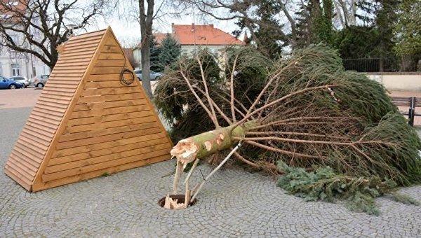 В Словакии городскую елку унесло ветром