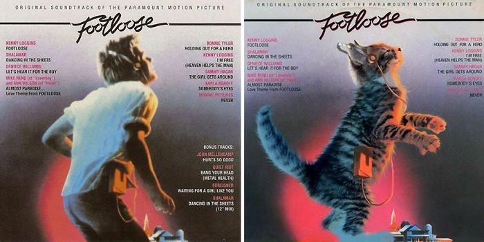 Художница Альфра Мартини создала серию обложек альбомов, на которых заменила исполнителей котятами
