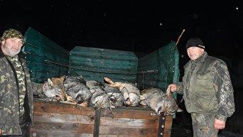 Волки, убитые охотниками в Закарпатье