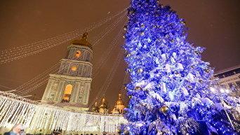 На Софиевской площади в Киеве зажгли елку