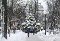 Елка в парке Шевченко
