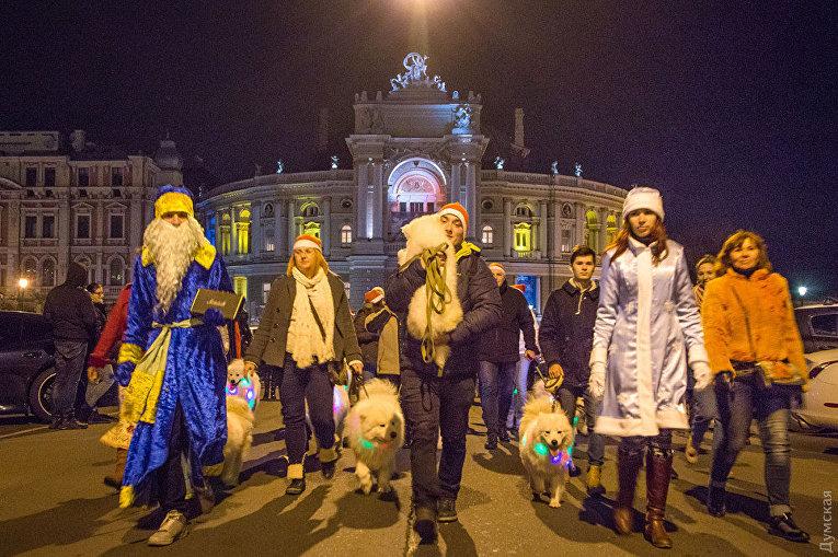В Одессе прошел новогодний парад собак