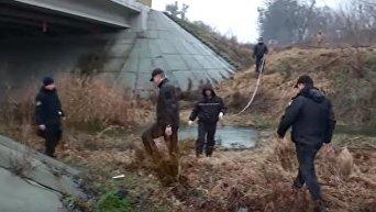 Эксперты на месте, где было найдено тело правозащитницы Ирины Ноздровской. Видео