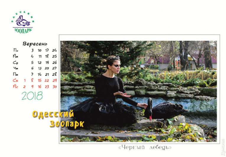 Одесский зоопарк выпустил странный календарь на 2018 год