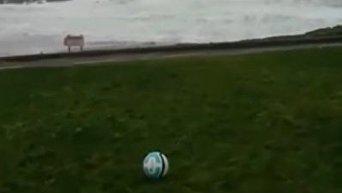 Ирландец показал, как сложно играть в футбол в его стране. Видео