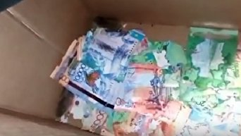 В Казахстане мыши съели деньги в банкомате