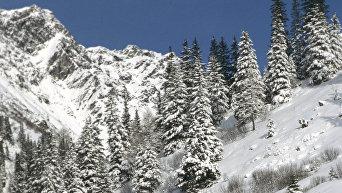 На лыжных трассах в горных Альпах