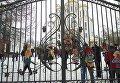 Окровавленные игрушки на воротах храма УПЦ МП в Тернополе