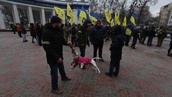 Бойцовская собака и ее хозяин на акции националистов Стоп реванш в Киеве 16 января