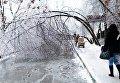 Снег в Черкассах
