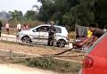 Огромная кобра устроила переполох на дороге во Вьетнаме. Видео