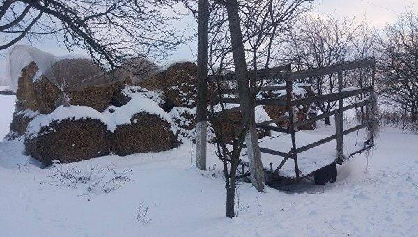 ВХарьковской области мать бросила наулице 2-месячную дочь