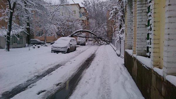 Масштабный снегопад во Львове. Архивное фото