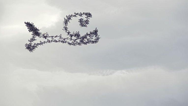 Следы полетов птиц в небе