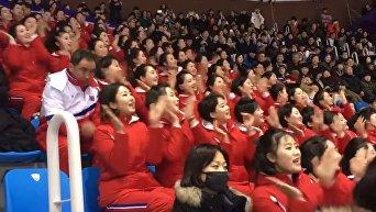 Северокорейские болельщицы произвели фурор на Олимпиаде. Видео
