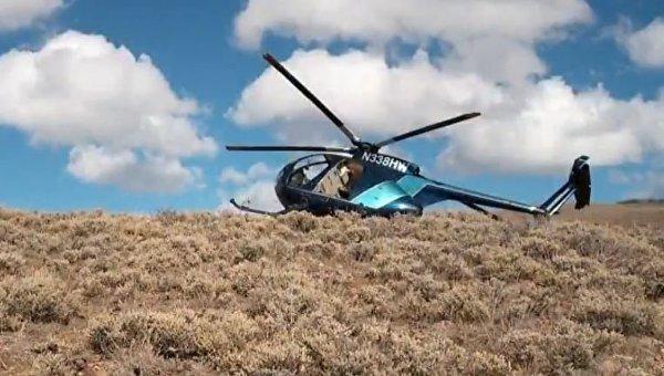 В США вертолет разбился после столкновения с лосем