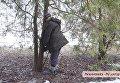 В Николаеве нашли мертвого мужчину возле дерева