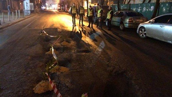 В Ивано-Франковске высадили тюльпаны в ямы на дорогах