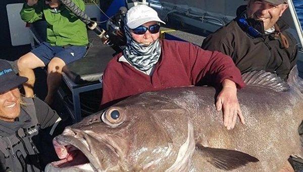 Пенсионерка поймала в Австралии невероятно огромного окуня