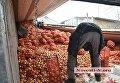 В Николаеве DAF с 20 тоннами лука врезался в жилой дом и перевернулся
