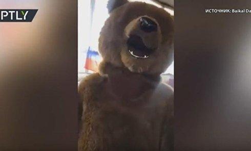 """В Бурятии на выборы пришёл """"медведь"""""""