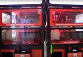 Омары вместо игрушек: в Китае игровой автомат переоборудовали для ловли членистоногих