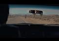 Появился клип Океана Эльзы на новую песню. Видео
