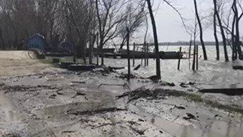 В Вилково Одесской области в результате паводка подтопило дома