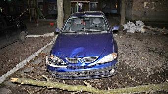 Последствия ураганного ветра в Киеве