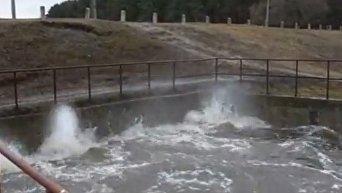 В Чернигове из-за талых вод вышла из берегов река Стрижень