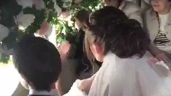 Свадьбу на борту самолета сыграли одесские молодожены