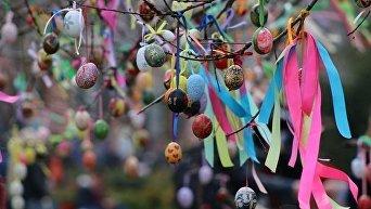 Дерево в Городском саду Одессы украсили сотнями писанок