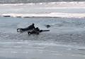 В России прохожие спасли провалившуюся под лед собаку. Видео