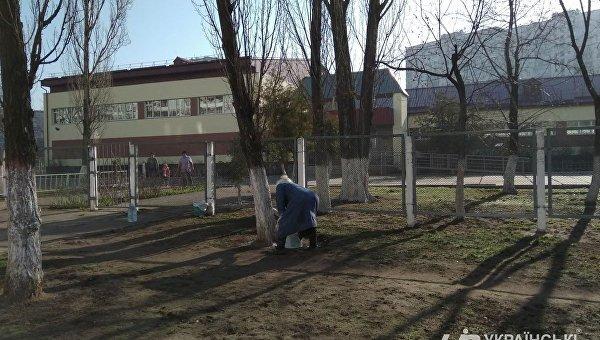 В Киеве белят деревья
